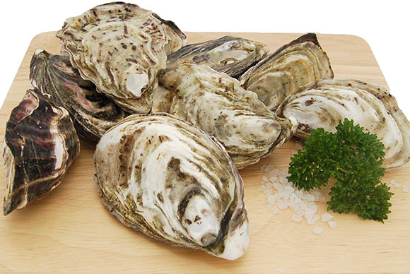 Oysters on chopping board