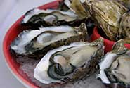 Oysters shucked on a plate