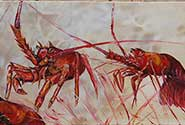 Netted Crayfish painting